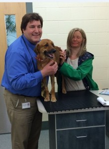 Angell's Dr. Rosenblad (left) with Jack's owner Megan Gaffney (right) after Jack's re-check appointment at the hospital (credit: MSPCA-Angell)