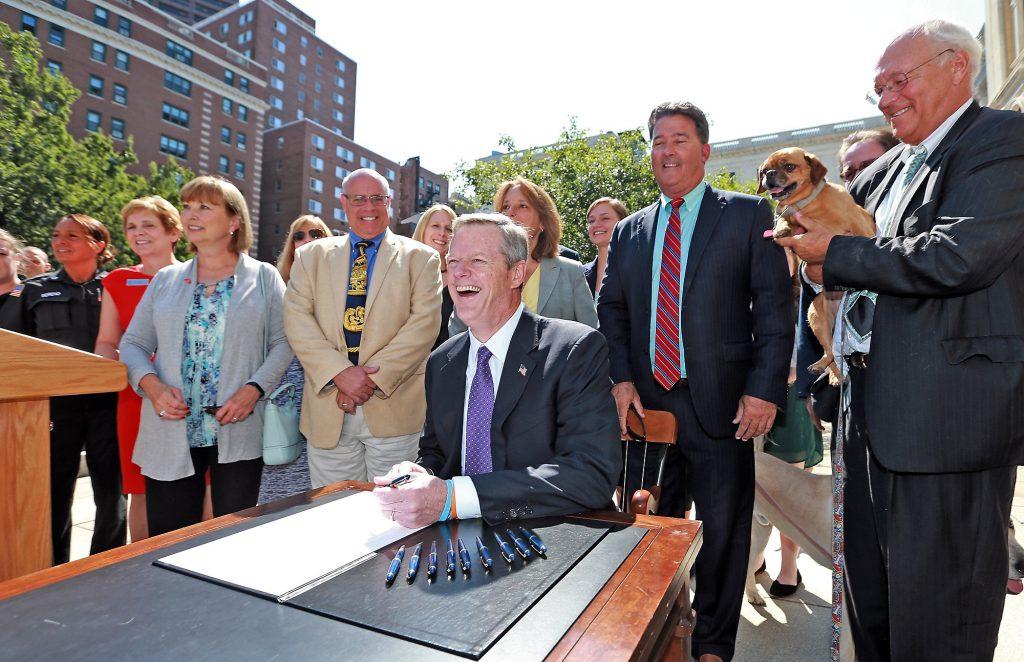 (Boston, MA, 08/24/16) MSPCA on Wednesday, August 24, 2016. Staff photo by Matt Stone