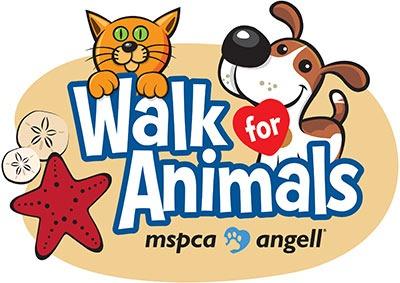 Walk For Animals Hyannis