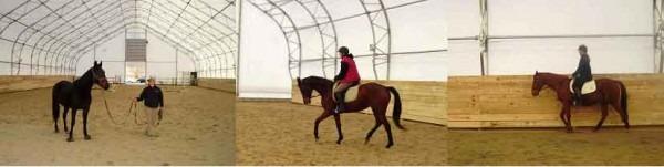 indoor-riding-web-3