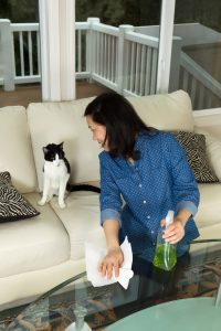cats and cleaning