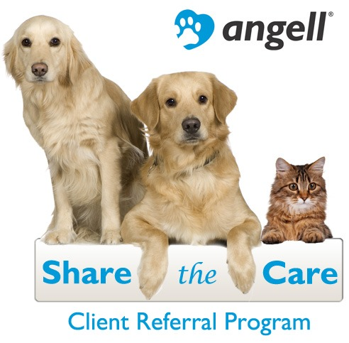 share-the-care-referral-program-graphic